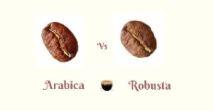 Arabica Vs Robusta Coffee