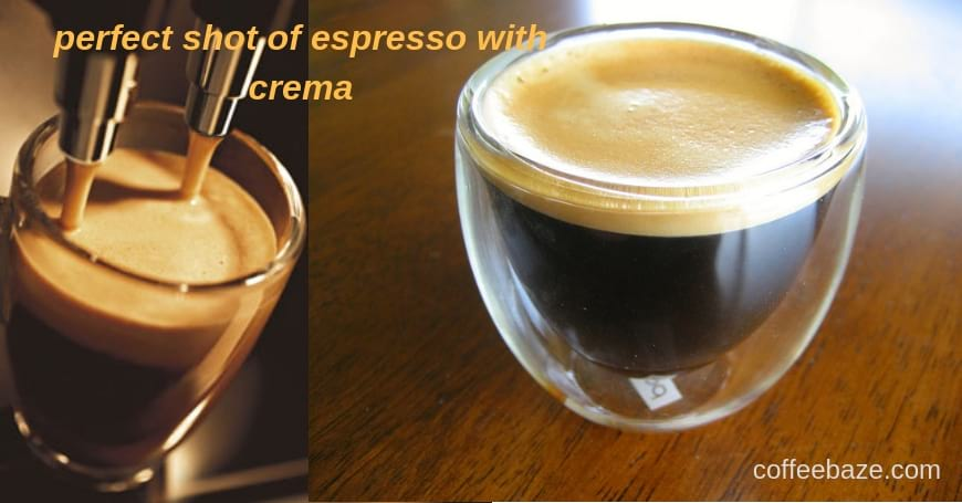What is Espresso Crema? How to Make it Perfect?